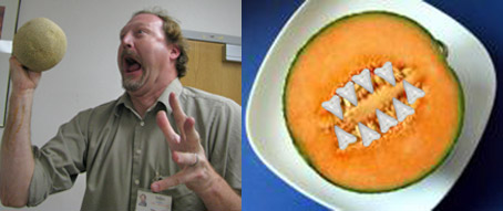 Cantaloupe Attacks More Brazen! Fruit threat level raised to orange