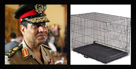 Egypt Builds Cage for Prospective Leader...Just in Case, But why not pyramid shape?