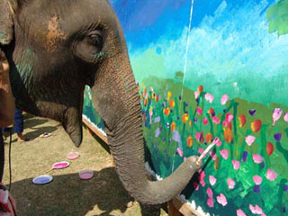 Study finds nine out of ten elephant-artists actually just huffing