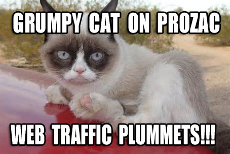Stock in Grumpy Cat Collapses