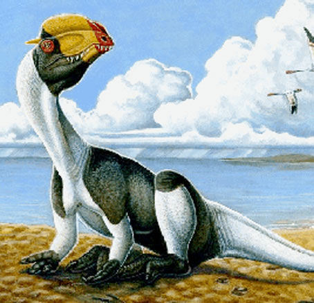 "Paleontologists Admit, ""We Just Made this F-ing One  Up"""