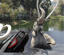 Not Again! Lohan Careens into La Brea Tar Pits