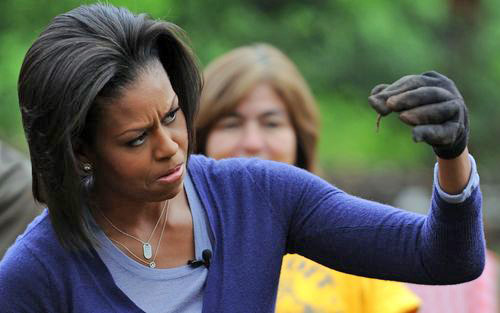 Michelle Obama Scrutinizes the Collective Spine of the Democrats