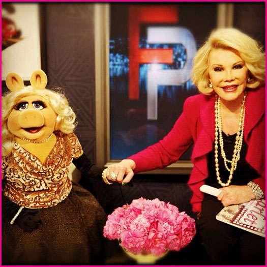 Joan Rivers, Best Known for her Role in the Muppets Take Manhattan, is Dead at 81, Can we blog?