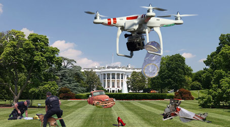 Cluttered White House Lawn Becoming Impossible to Mow