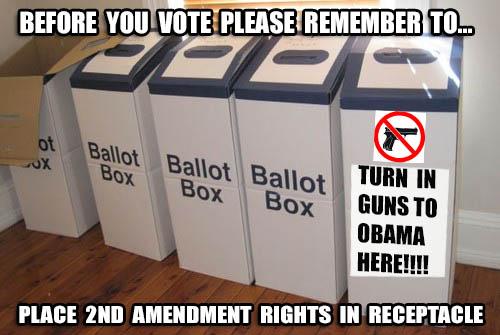 ballotbox2
